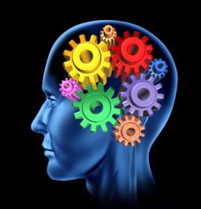 brain efficiency mechanism