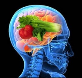 brain power foods