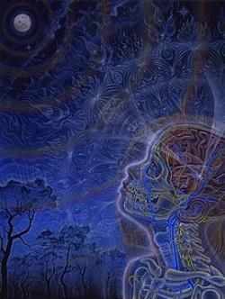 human consciousness mystery